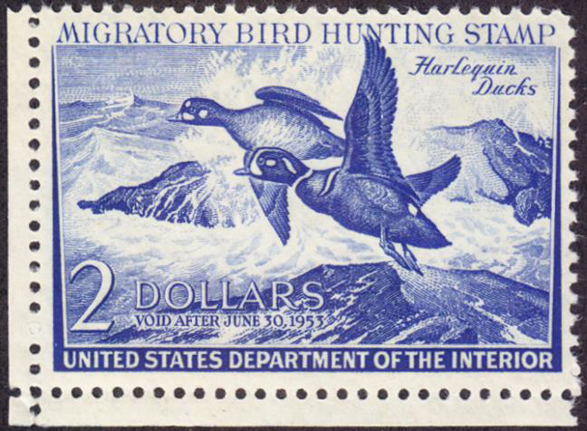 Scan of RW19 1952 Duck Stamp