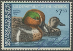 Scan of RW46 1979 Duck Stamp
