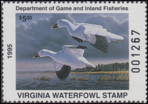 Scan of 1995 Virginia Duck Stamp