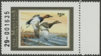 Scan of 1996 Montana Duck Stamp