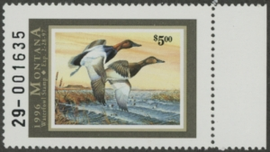 Scan of 1996 Montana Duck Stamp  MNH VF