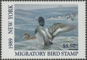 Scan of 1989 New York Duck Stamp