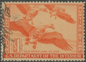 Scan of RW11 1944 Duck Stamp  Used Fine