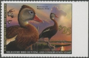 Scan of RW87 2020 Duck Stamp - New