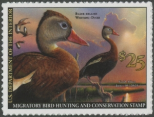 Scan of RW87 2020 Duck Stamp