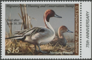 Scan of RW75 2008 Duck Stamp