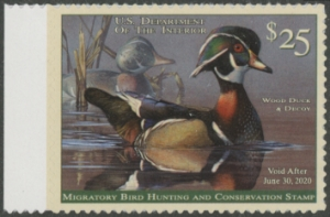 Scan of RW86 2019 Duck Stamp