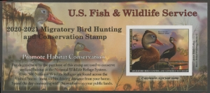 Scan of RW87A 2020 Duck Stamp