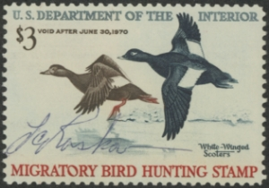 Scan of RW36 1969 Duck Stamp  Used F-VF