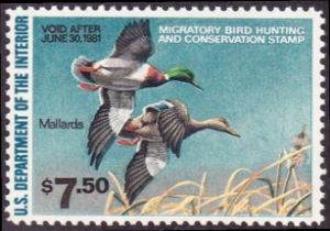 Scan of RW47 1980 Duck Stamp  MNH F-VF