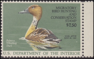 Scan of RW53V 1986 Duck Stamp