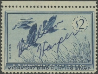 Scan of RW22 1955 Duck Stamp  Used F-VF