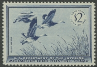 Scan of RW22 1955 Duck Stamp  MNH VF
