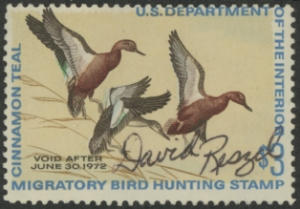 Scan of RW38 1971 Duck Stamp  Used VG
