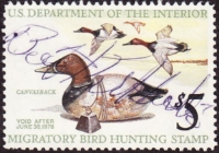Scan of RW42 1975 Duck Stamp  Used F-VF