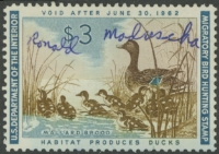 Scan of RW28 1961 Duck Stamp