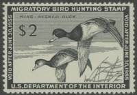 Scan of RW21 1954 Duck Stamp  MNH F-VF