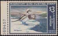 Scan of RW34 1967 Duck Stamp  MNH Fine