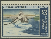 Scan of RW34 1967 Duck Stamp  Unsigned, NG F-VF