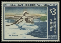 Scan of RW34 1967 Duck Stamp  MNH VF