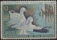 Scan of RW37 1970 Duck Stamp  Used Fine